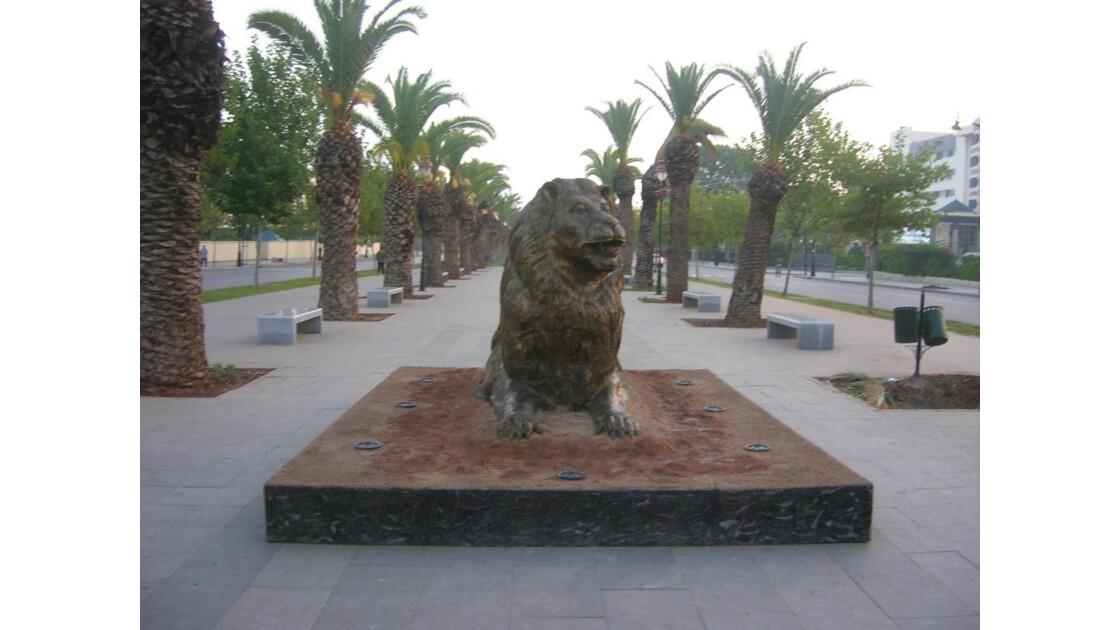 Maroc Le lion de l'atlas Fes