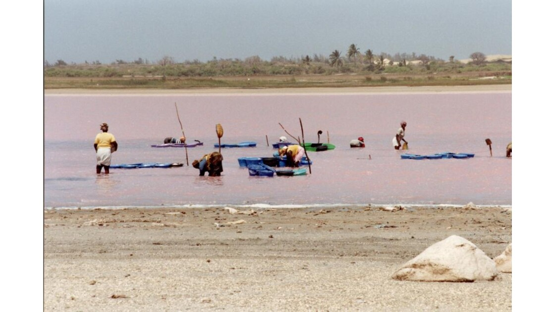 Récolte du Sel sur le Lac Rose
