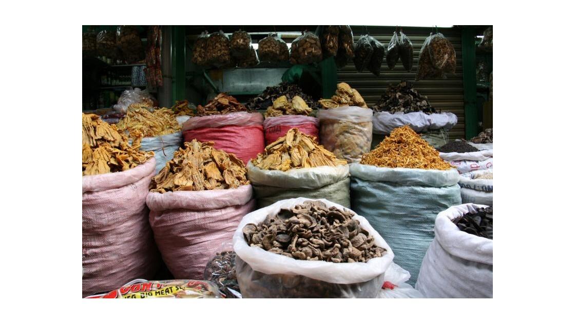 HO CHI MINH - MARCHE BINH TAY