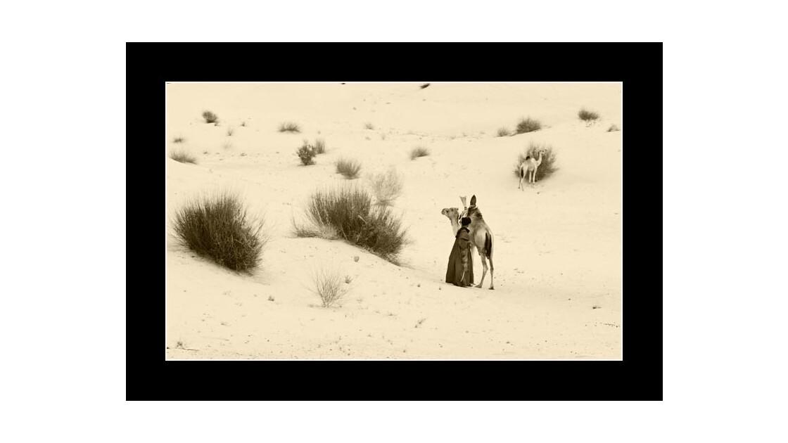 solitude au Sahara