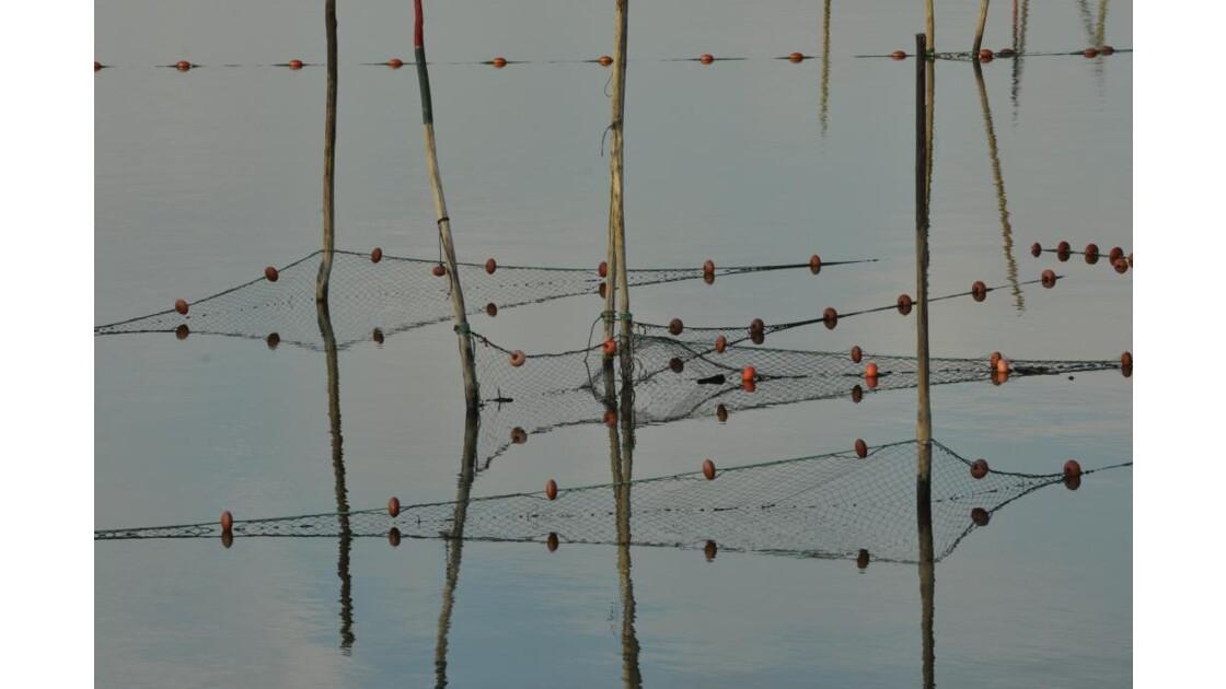 _DSC0923.JPG- Filets de pêche