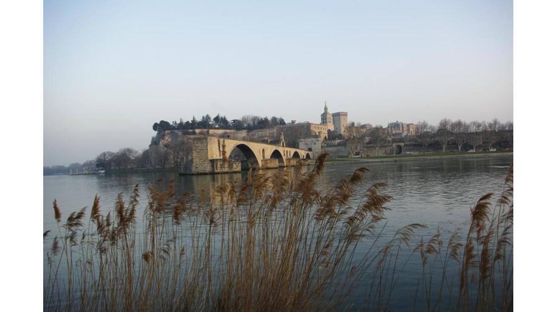 Le pont d'Avignon 7