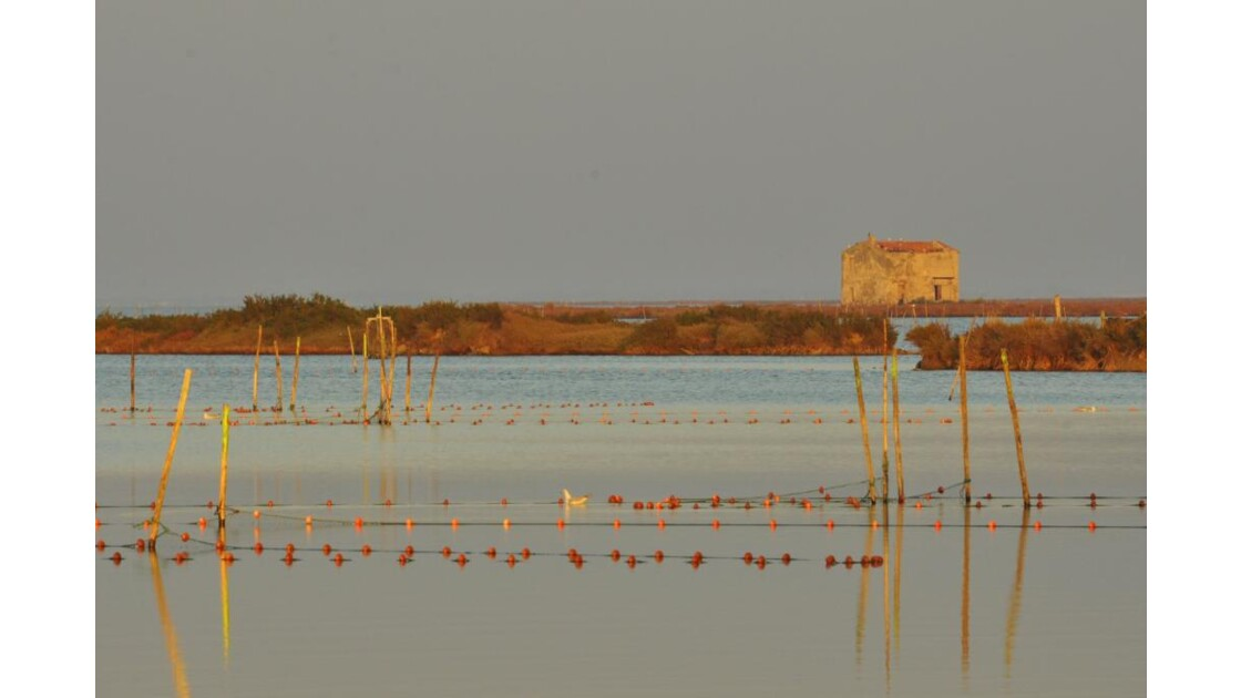 _DSC1032.JPG- Filets de pêche et mazet.