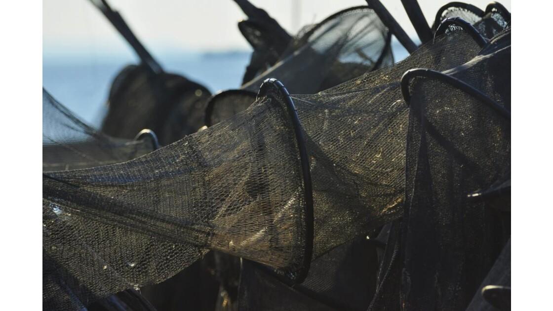 _DSC0554.JPG- Filets de pêche.