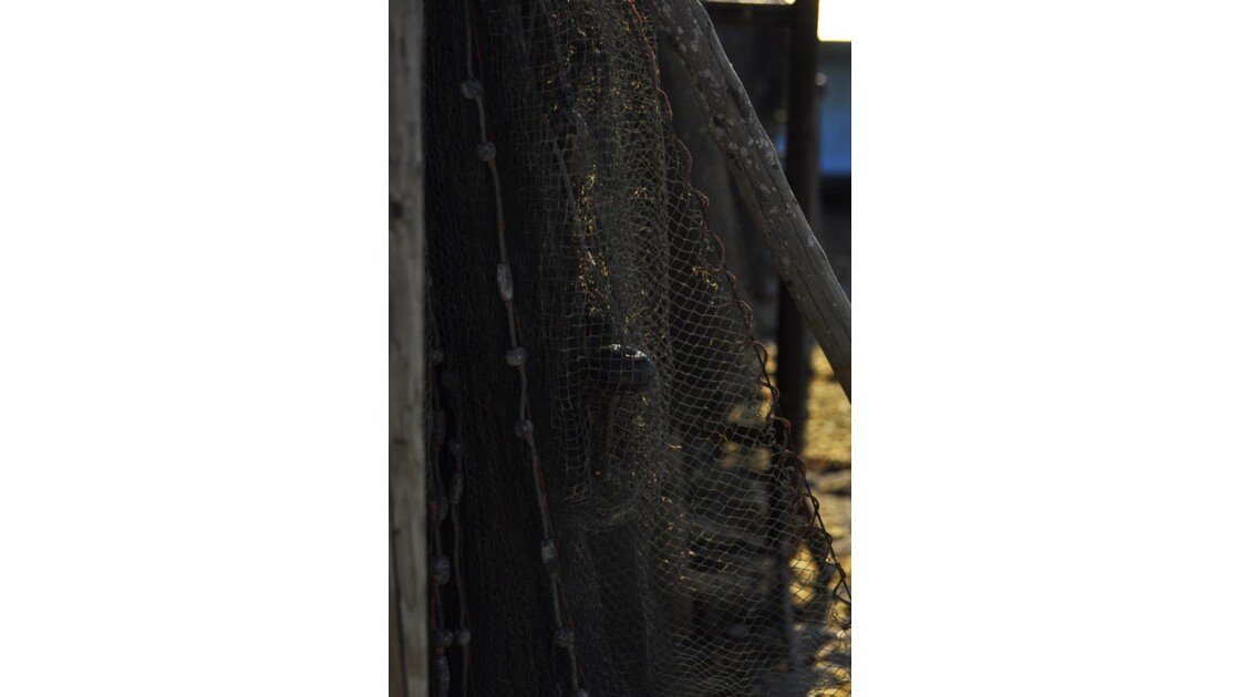 _DSC0553.JPG- Filets de pêche