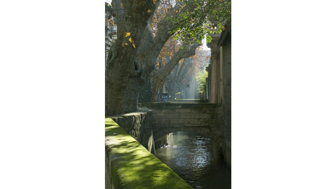Avignon. La rue des Teinturiers