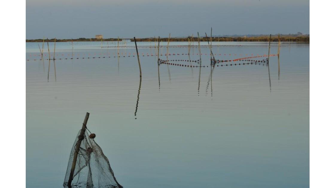 _DSC0933.JPG- Filets de pêche.