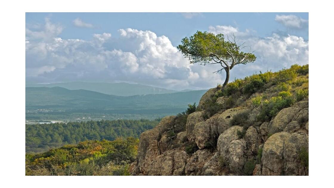 La Provence vue de la Sainte Victoire.