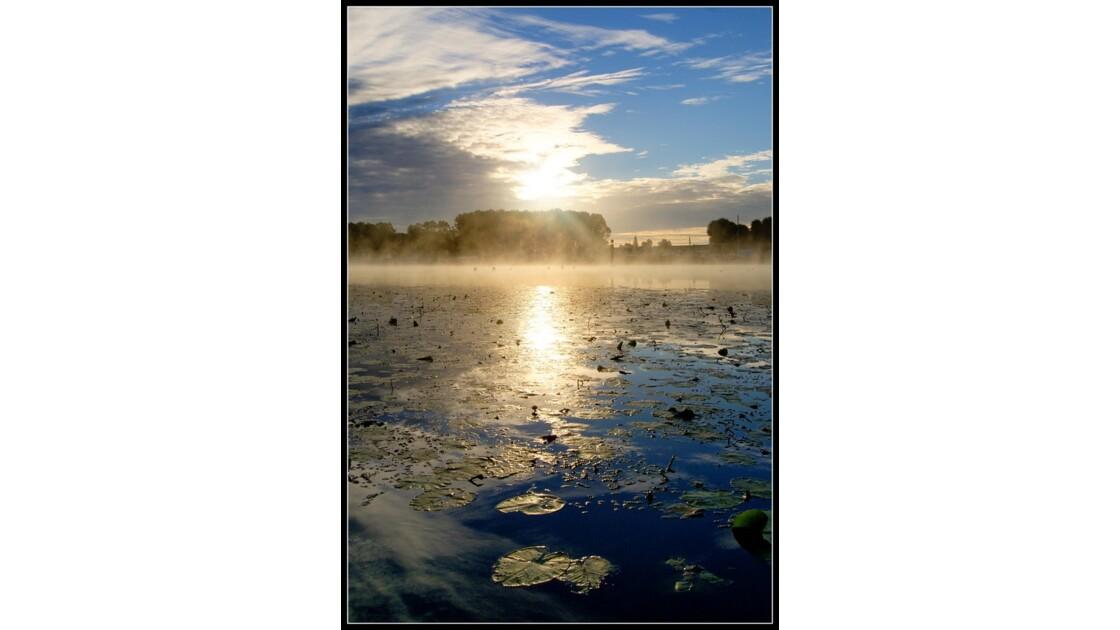 Brume et soleil matinal