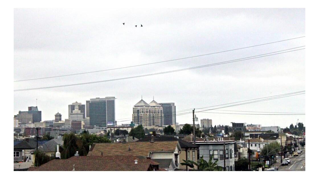 __4953.jpg SAN FRANCISCO