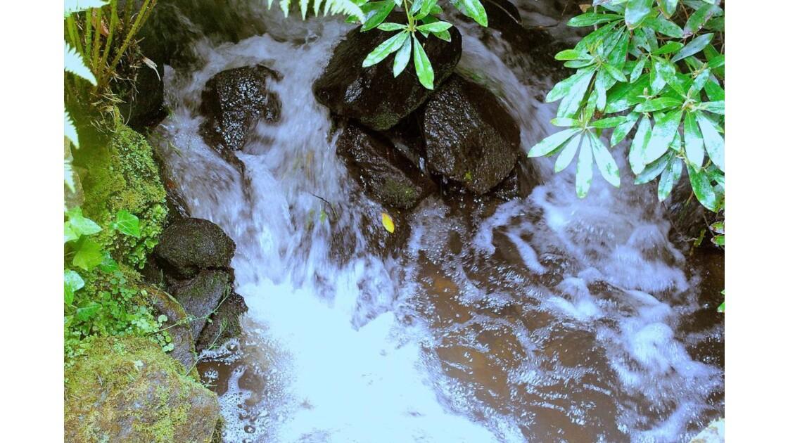 Entre les pierres