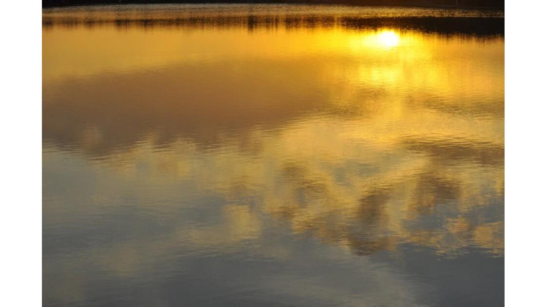 _DSC0378.JPG - L'étang doré...