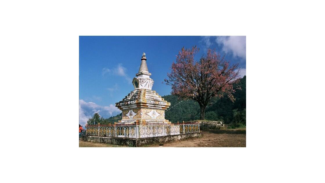 La même Stupa mais pas avec le même oeil
