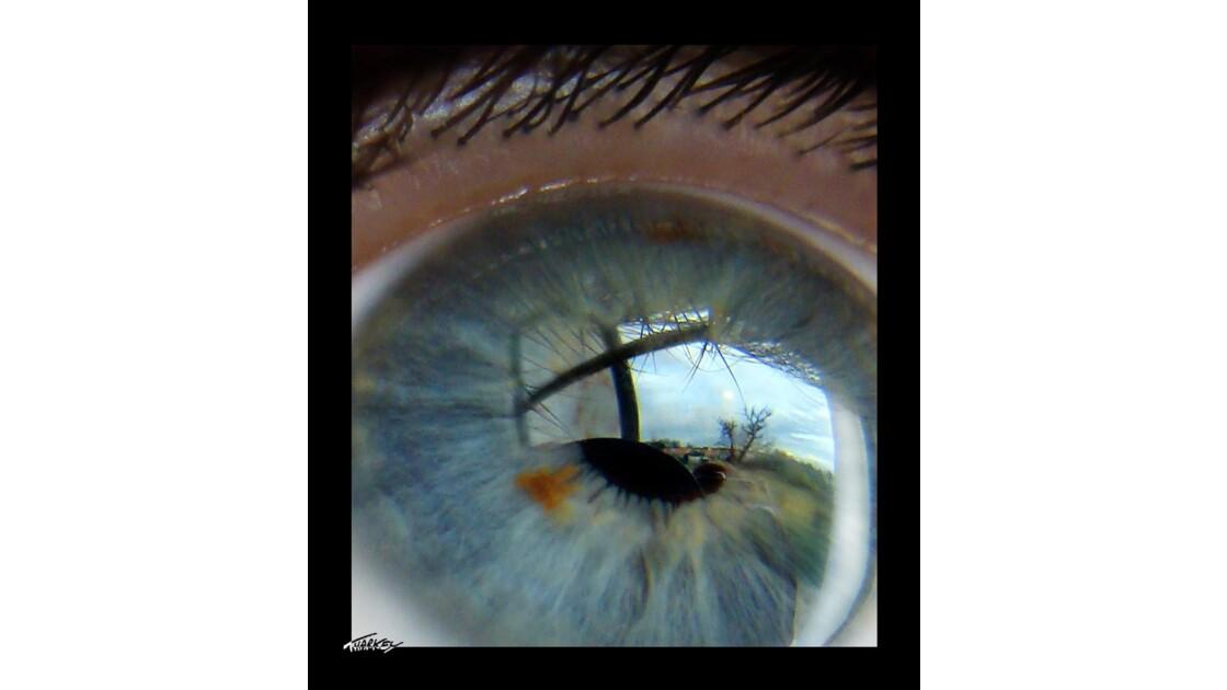 My Thark'eye, the tree and the sky...
