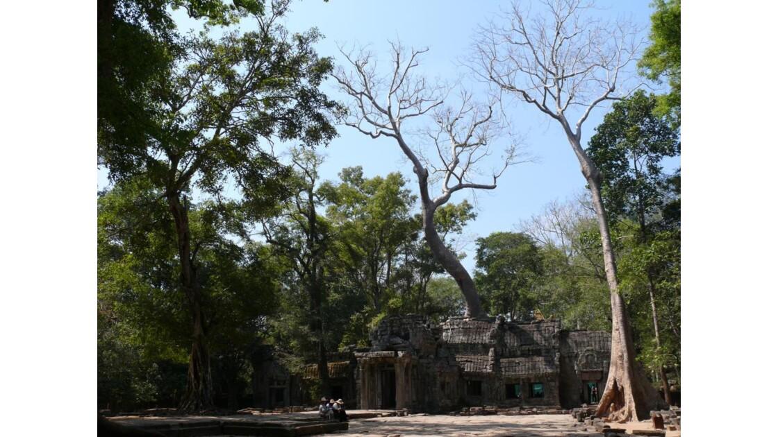le temple Ta Prohm