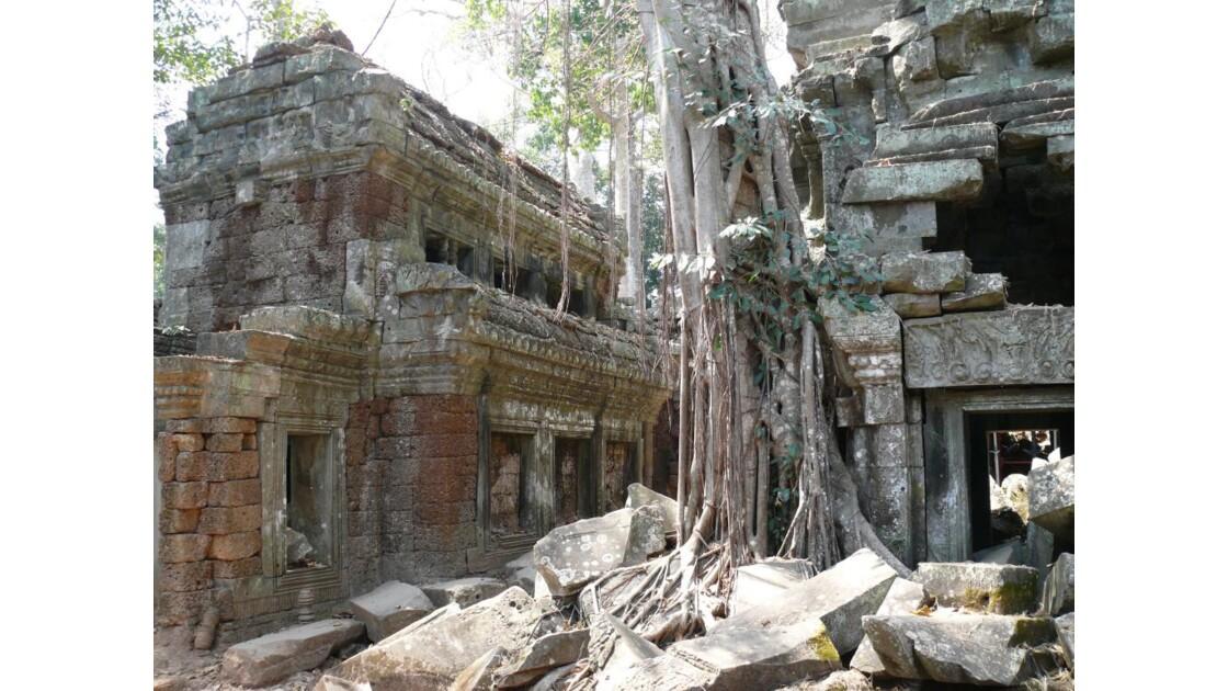 le temple de Ta Prohm