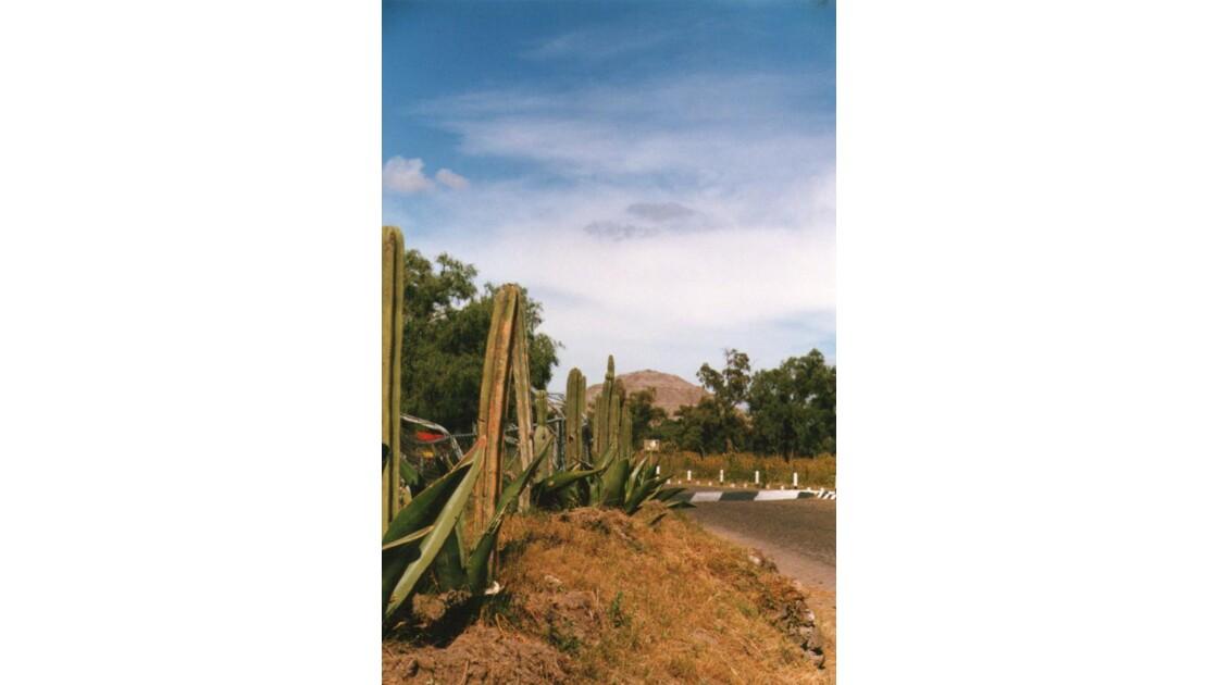 Sur la route de Teotihuacan