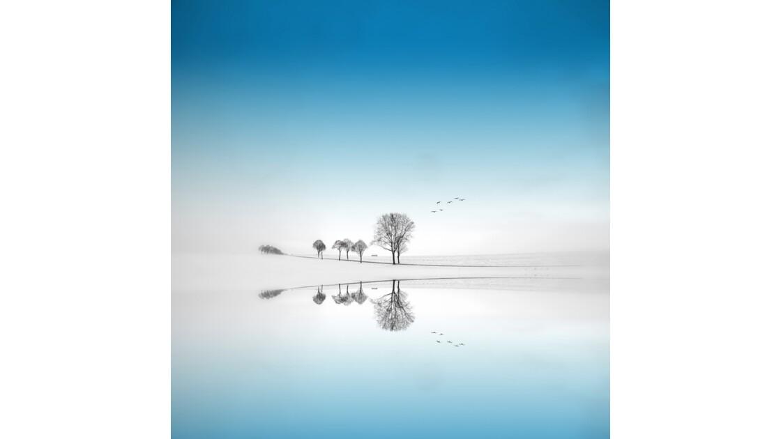 Saison Bleue