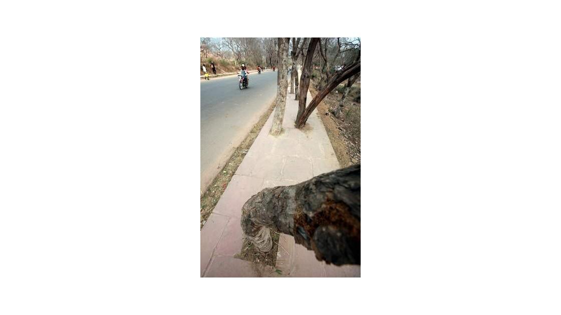 G39___Jaipur___environs___INDE__640x480