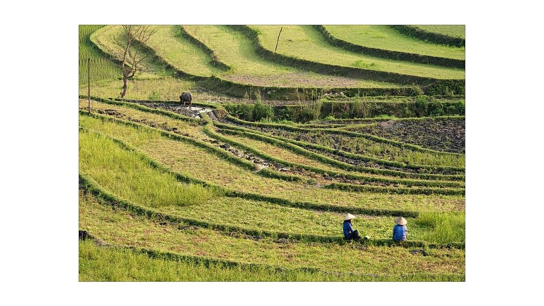 Nord Vietnam
