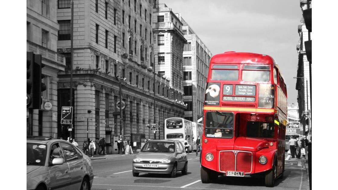 Les bus rouges
