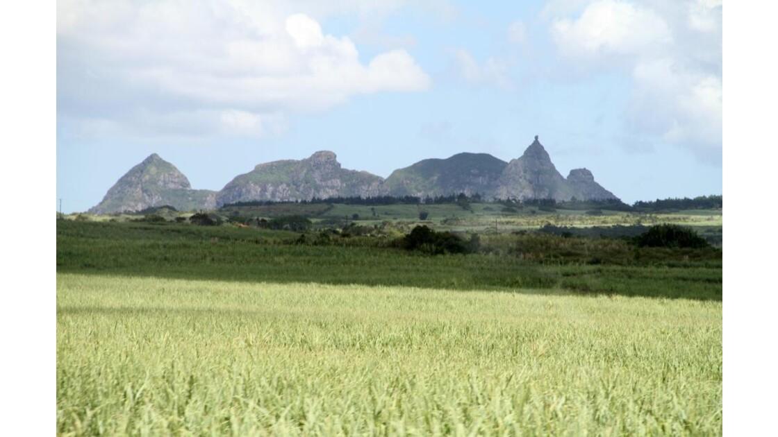"""""""Plaine et montagnes ..."""""""