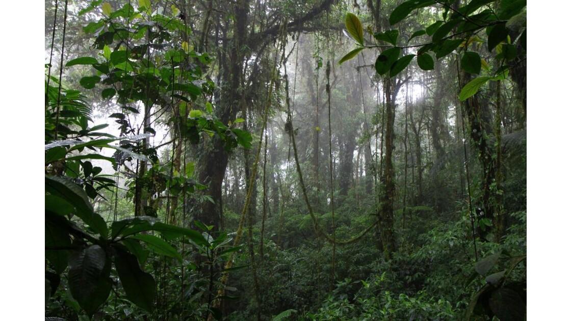 Réserve de Santa Elena