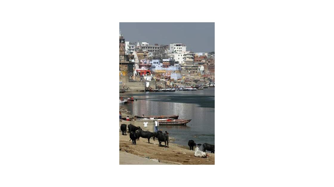 J96___Varanasi___Benares___INDE__640x48