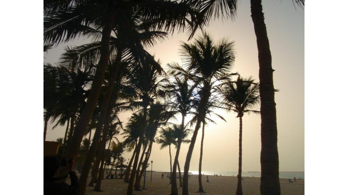 les jolies plages de Dubai!
