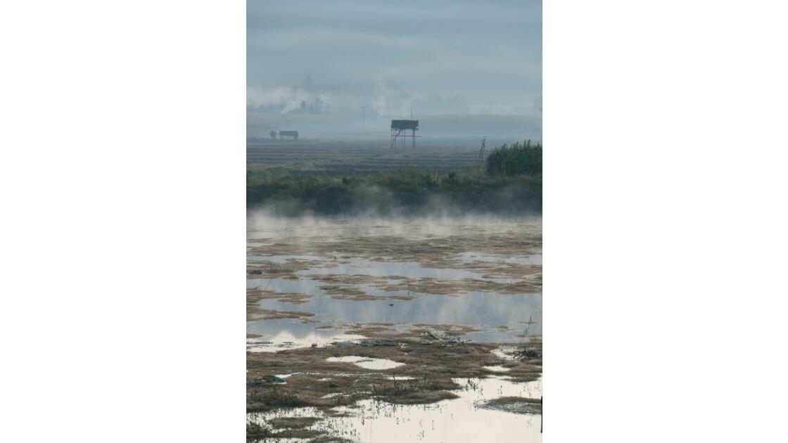 Brumes matinales - rives du lac Inlé
