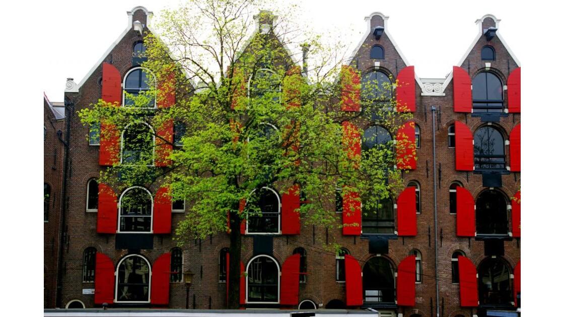 Amsterdam__2_.jpg
