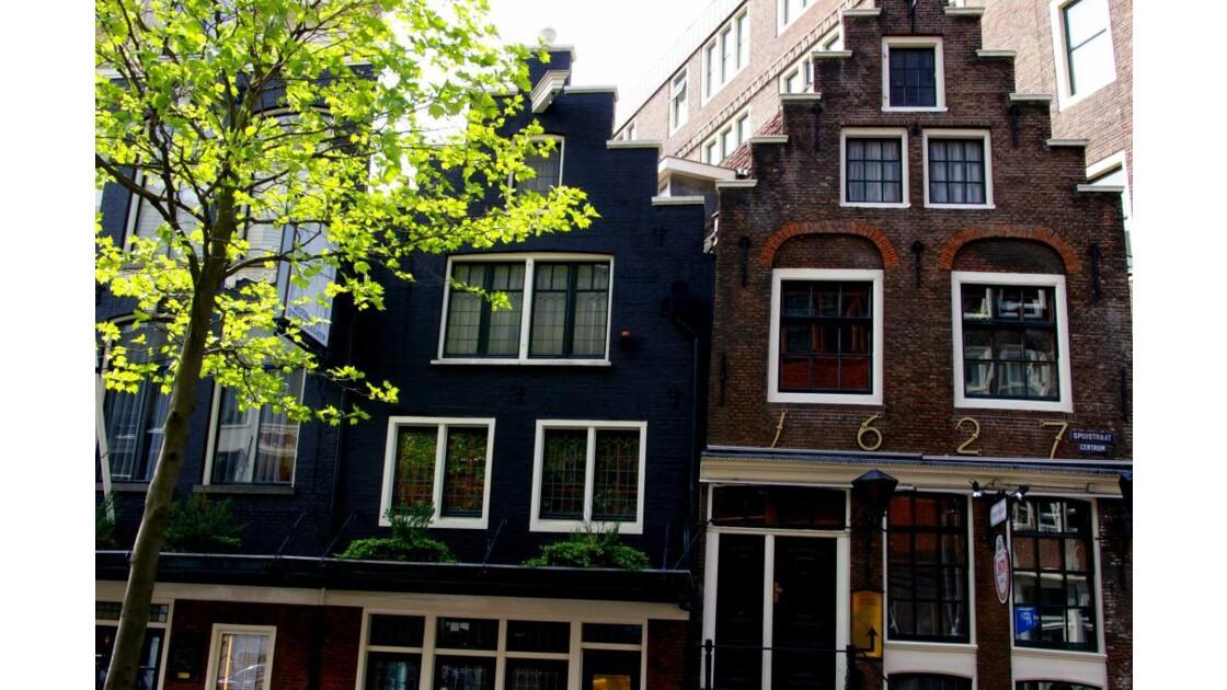 Amsterdam__7_.jpg