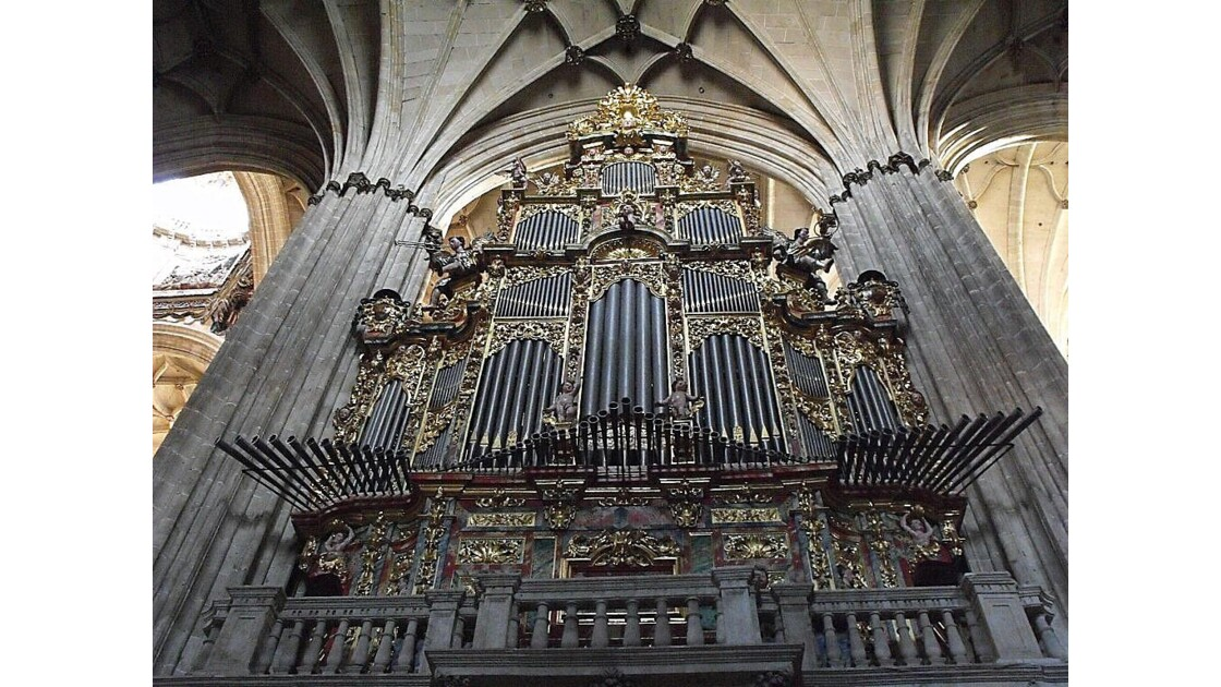 cathedrale salamanque: l'orgue