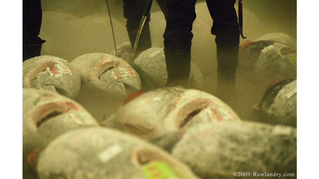 Tsukiji_fish_market__Tsukiji_shijo__Dec