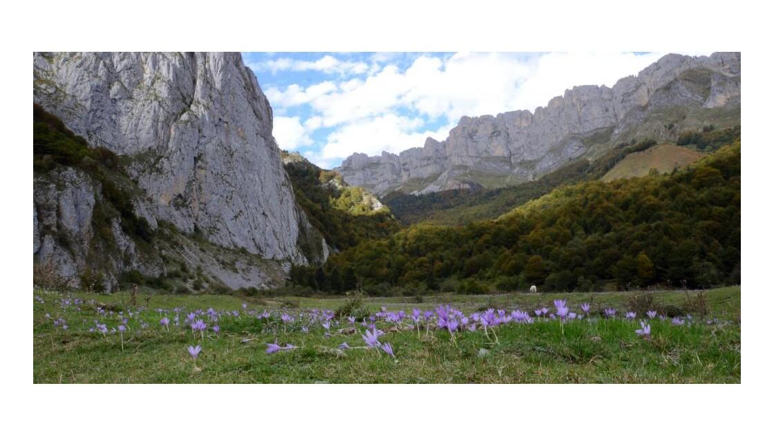 Pyrénées - 2012 10 08 (44)