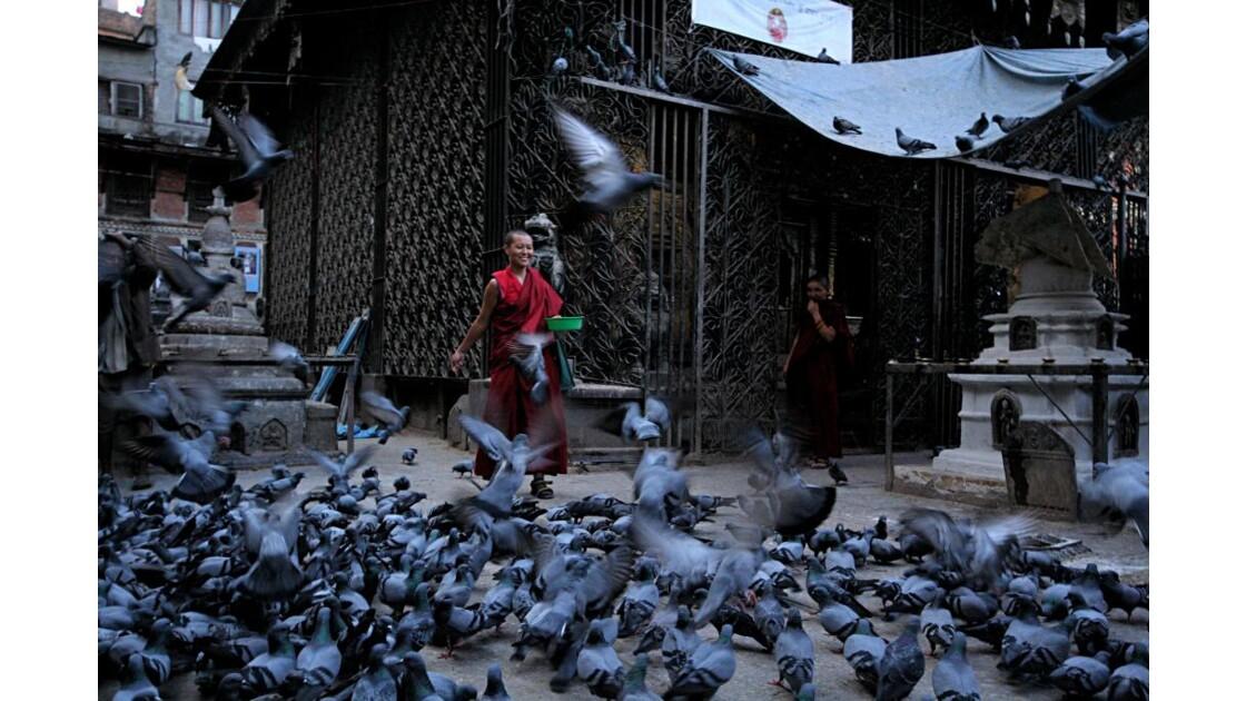 Le moine et les pigeons