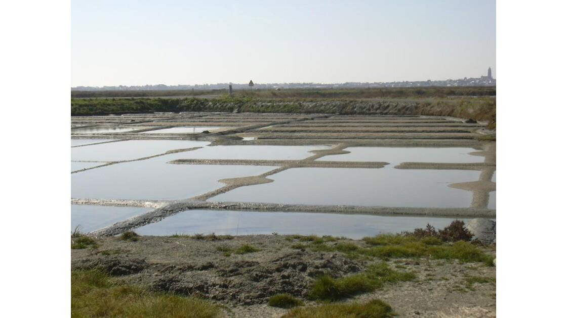 Marais salants - Presqu'ile guérandaise