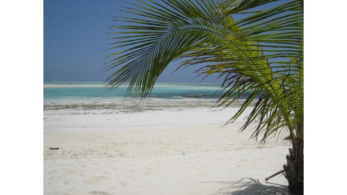 Les plages de Zanzibar