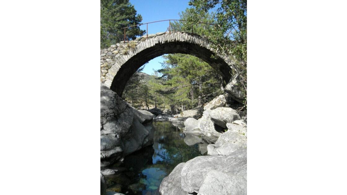 tartagine pont genois