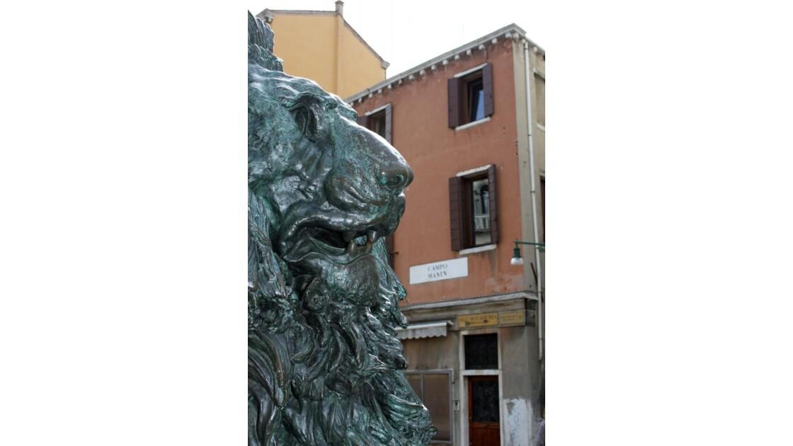 le lion....