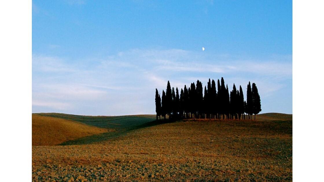 Toscane # 1