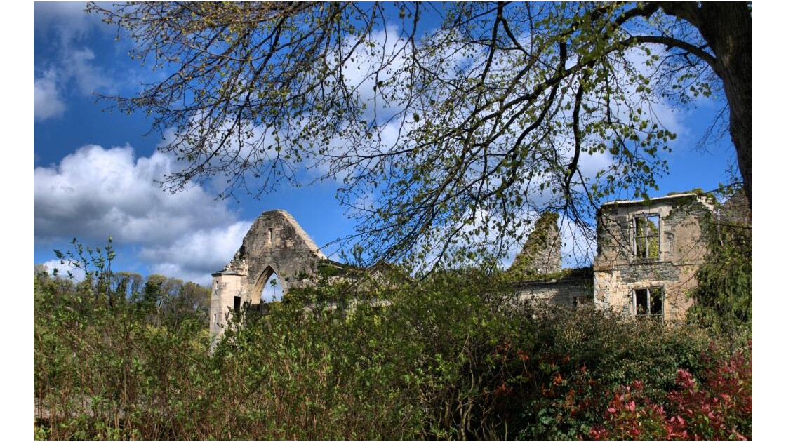 Aperçu des ruines de l'Abbaye