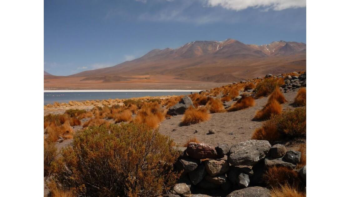 Désert d'Uyuni - Bolivie