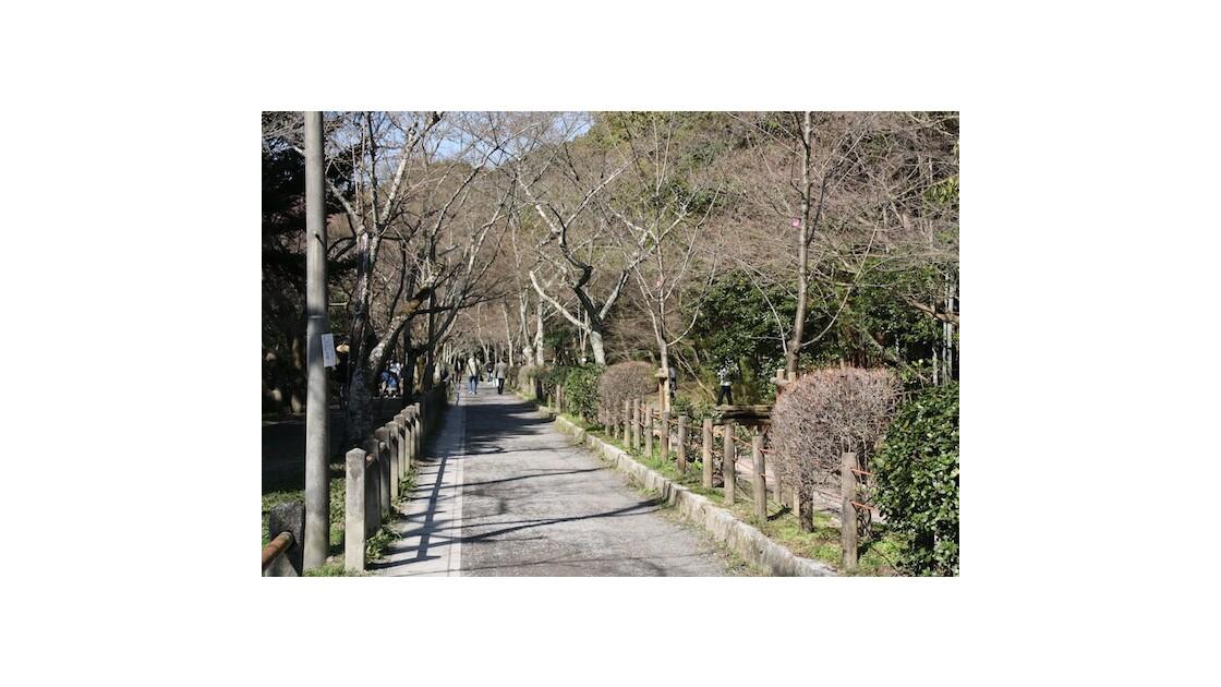 Kyoto, Tetsugatsu no michi