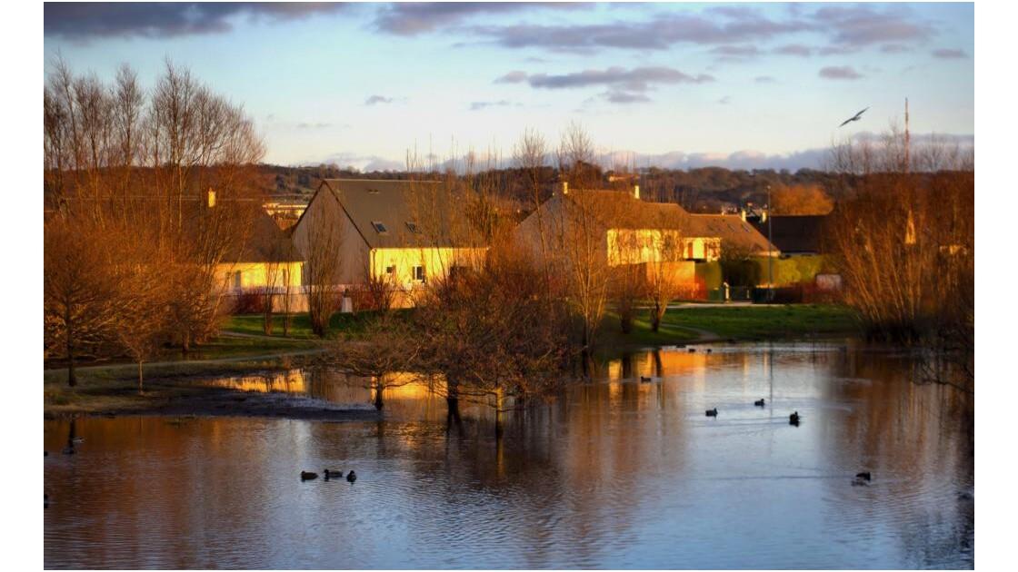 Maisons au bord de l'eau 7563.