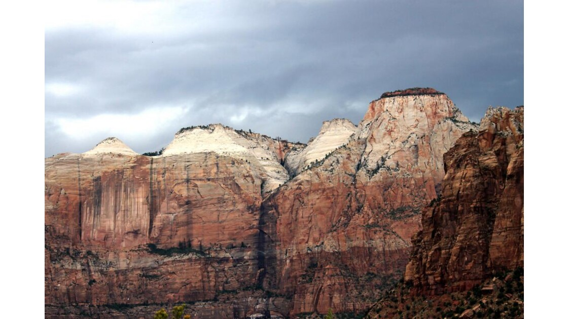_8329._  ZION NATIONAL PARK