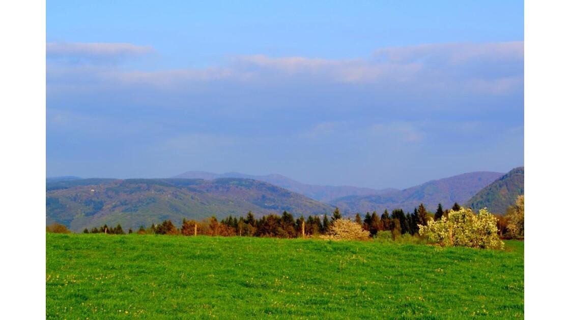 paysage vosgien