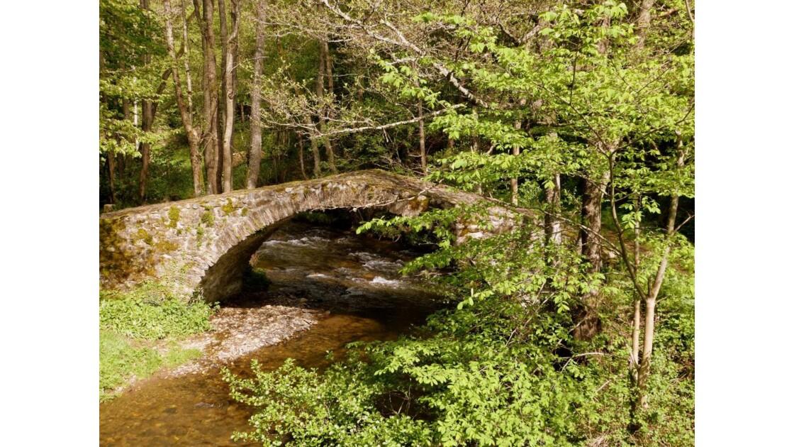 Un petit pont