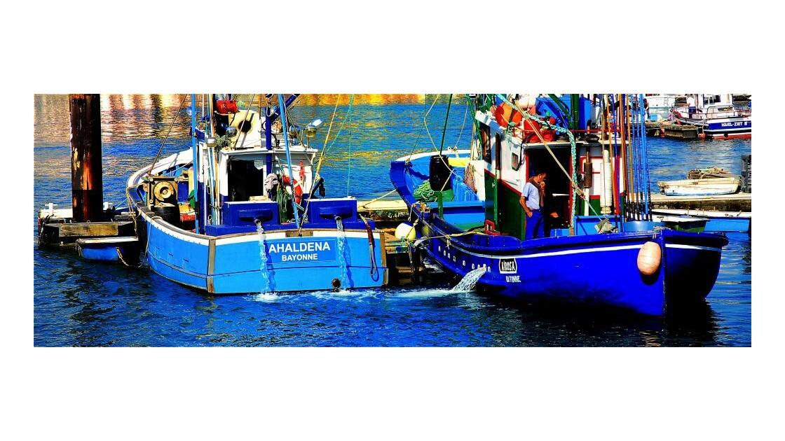Blue Ships !!!