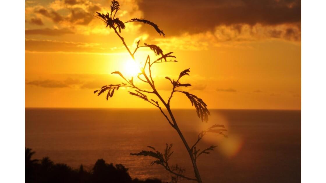 coucher de soleil a la montagne